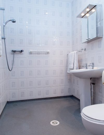 Bathroom with all you need and Disabled Access